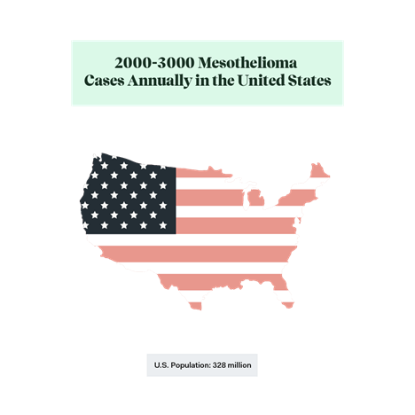 Flag US Outline: 2-3k mesothelioma cases per year out of 328M population.